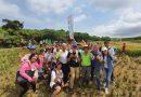 銘傳休憩系參與USR割稻計畫